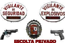 Curso Superior de Personal de Seguridad Privada (Vigilante de Seguridad, Escolta y Explosivos)