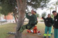 Poda y trepa en altura: mantenimientos forestales