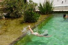 diseo y construccin de piscinas naturalizadas quarta natura sl - Piscinas Naturalizadas