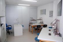 Laboratorio de prácticas de diamante