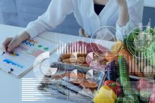 Elaboración dietas