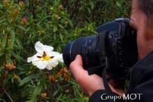 Fotografía Práctica