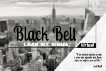 Black Belt Lean Six Sigma Virtual