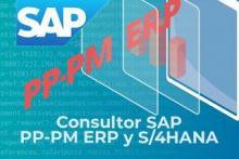 SAP HCM ERP Y S/4HANA