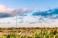 Marketing y recursos Humanos en empresas de energías renovables