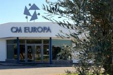CM Europa - Formación aceite de oliva y olivar