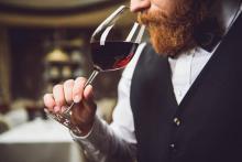curso de cata de vinos, maridaje y sumiller