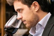 curso de enología, viticultura y cata
