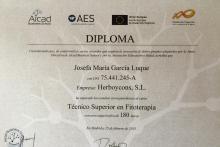 Modelo Diploma AES