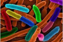 Control y Prevención Legionella