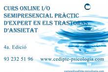 Curso Práctico de Experto en los Trastornos de Ansiedad Online (4a Edición)