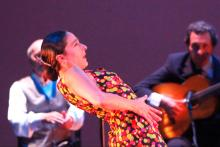 Flamenco (Paz Díaz)