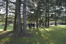 El CSHG ocupa 54.000 metros cuadrados con cinco edificos, zonas de aparcamiento y amplias zonas verdes.