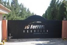 Tenis Juan Carlos Ferrero