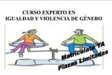 Curso Experto en Igualdad y Violencia de Género