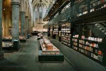 Experto en gestión Documental en Museos y Centros Culturales