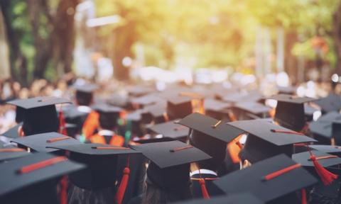 ¡Escoge tu grado o carrera universitaria! Te damos toda la información necesaria